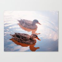 duck Canvas Prints featuring Duck by DistinctyDesign