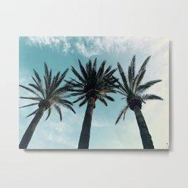 Palm tree dream Metal Print