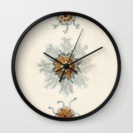 Vintage Jellyfishes Illustration Wall Clock