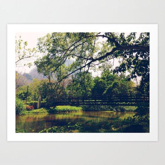 Poisson Palace Bridge Art Print