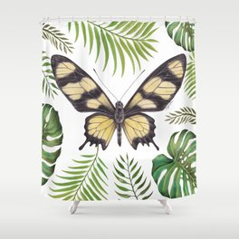 Butterfly Painting | Hahnel's Amazonian Swallowtail | PARIDES HAHNELI | Nature | Animal Art Shower Curtain