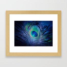 Peacock Feather Blush Framed Art Print