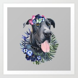 Flower power great Dane Art Print