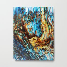 Water World - Flog in a cave Metal Print