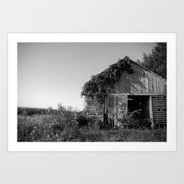 Abandoned Barn Garden (Black & White Photography) Art Print