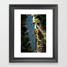 a south Texas cactus.  Framed Art Print