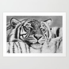 Tiger Pillow Art Print