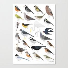 25 Birds Canvas Print
