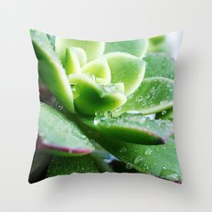 Drops of Dew Throw Pillow