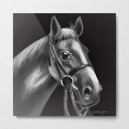 Grey farm horse Metal Print