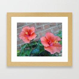 Red Beauty Framed Art Print