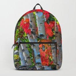 Birch Maple by Teresa Thompson Backpack