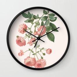 Rosa Multiflora Wall Clock