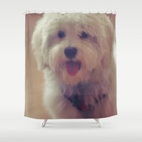 puppy Shower Curtains featuring Puppy  by adebellis