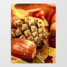 Arbores autumnales effectu Poster