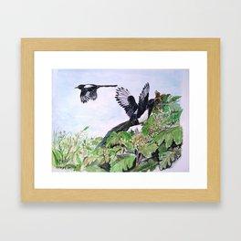 Urracas Framed Art Print