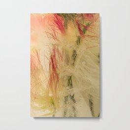 Mimosa Tree #32 Metal Print