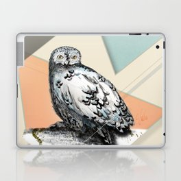 Owl McSit by carographic Laptop & iPad Skin