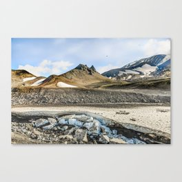 "Extrusion ""Camel"" at the foot of the Avachinsky volcano Canvas Print"