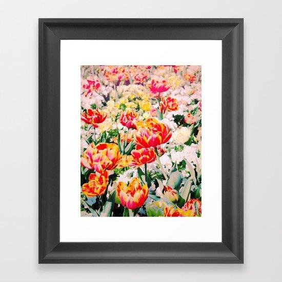 Beauty in Nature! Framed Art Print