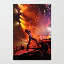 The Flaming Lips Canvas Print