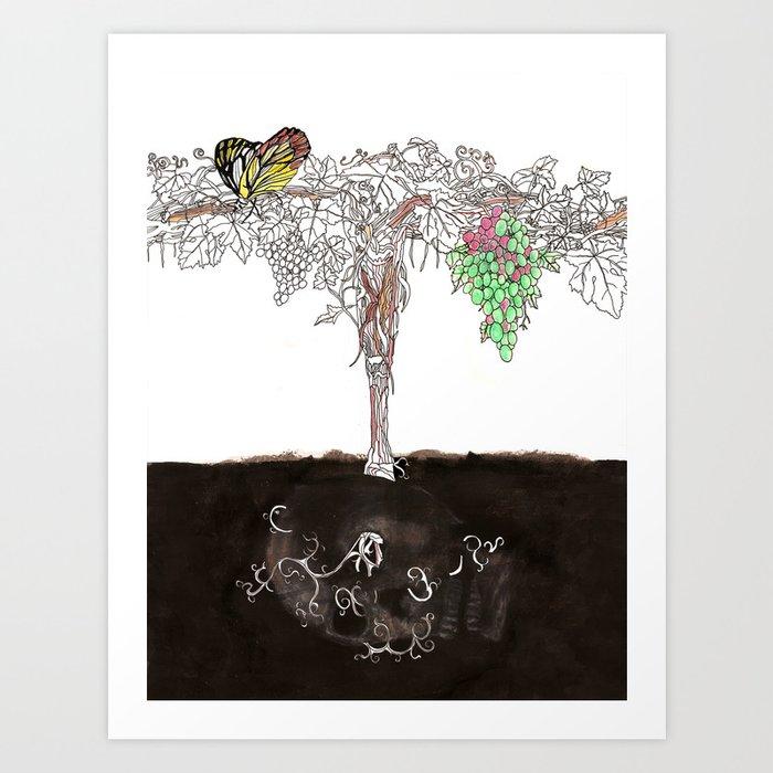 Shiraz Art Print
