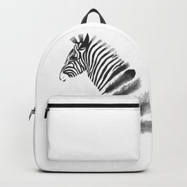 Dissappear Backpack