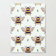 honey guards Canvas Print