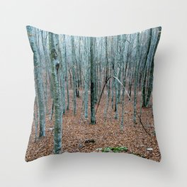 Typical autumnal postcard from the woods, with a scary atmosphere Throw Pillow
