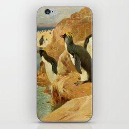 Kuhnert, Friedrich Wilhelm (1865-1926) - Wild Life of the World 1916 v.3 (Rock Penguin) iPhone Skin