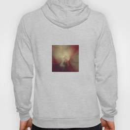 Burgandy Red Lava Lamp Abstract Hoody