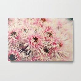 Fairy Floss Gum Blossoms Metal Print