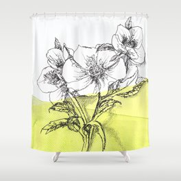 Hellebore watercolor pen illustration Shower Curtain
