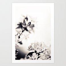Black and White Flowers 2 Art Print