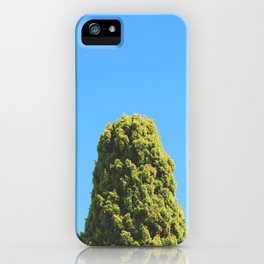 The Sparrows Apartment iPhone Case