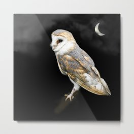The Owl and the Moon Metal Print