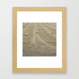 Rolling Harvest Framed Art Print