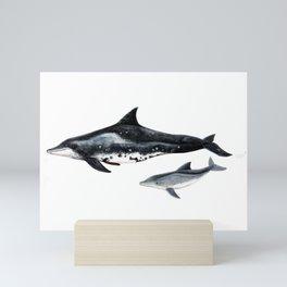 Rough-toothed dolphin (Steno bredanensis) Mini Art Print
