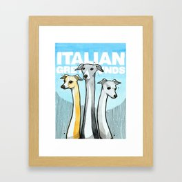 Italian Greyhounds Framed Art Print
