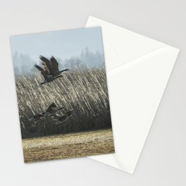 The Takeoff, No. 5 Stationery Cards