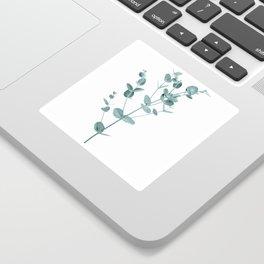 Minimal Eucalyptus Sticker