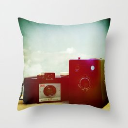 Two Brownies Together Throw Pillow