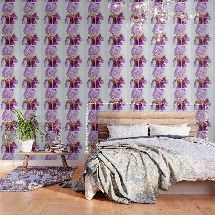 Pinky Purple Iris Bloom watercolor by CheyAnne Sexton Wallpaper