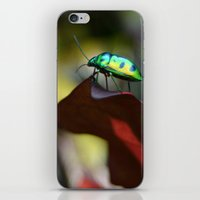 philippines iPhone & iPod Skins featuring Iridescent Bug (Philippines) by Dr. Tom Osborne
