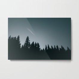 Forest XVI Metal Print