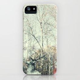 Volga iPhone Case