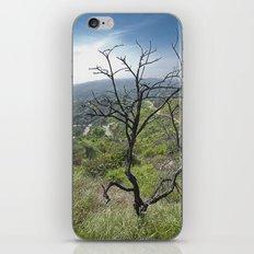 Mountain Tree iPhone & iPod Skin