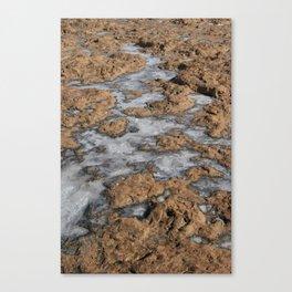 Salt pools Canvas Print