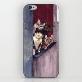 Gatitos en ventana iPhone Skin