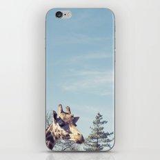giraffe... iPhone & iPod Skin